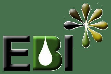 EBI Investigação e Desenvolvimento